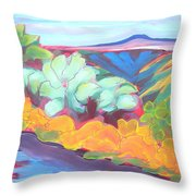 Canyon Dreams 18 Throw Pillow