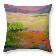 Canyon Dreams 8 Throw Pillow
