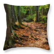 Canyon Falls Trail 1 Throw Pillow