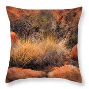 Canyon Grasses Throw Pillow