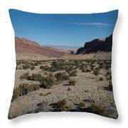 Canyon Lands Throw Pillow
