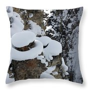Canyon Ledge Throw Pillow