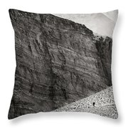 Canyon Nishgar Throw Pillow