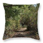 Canyon Path I Throw Pillow