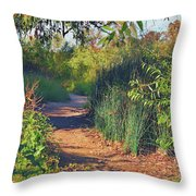 Canyon Path II Throw Pillow