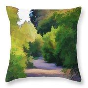 Canyon Path IIi Painterly Throw Pillow