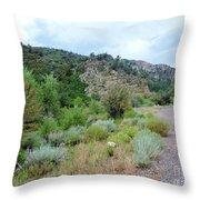 Canyon Road Throw Pillow