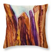 Canyon Splendor Throw Pillow