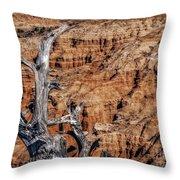 Canyon View Nevada Throw Pillow