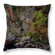 Canyon Wall Throw Pillow