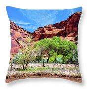 Canyon Wall. Throw Pillow