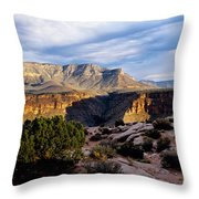 Canyon Walls At Toroweap Throw Pillow