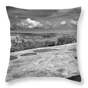 Canyonlands Puddles Throw Pillow
