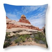 Canyonlands Spring Landscape Throw Pillow