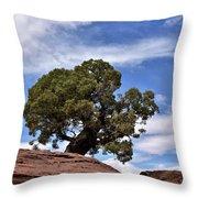 Canyonlands Tree Throw Pillow