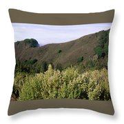 Canyons And Clouds Throw Pillow