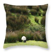 Caora  Throw Pillow