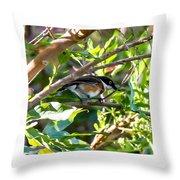 Cape Batis Throw Pillow