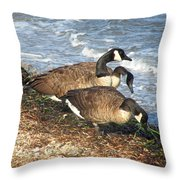 Cape Cod Beachcombers 1 Throw Pillow