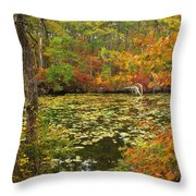 Cape Cod Kettle Pond Foliage Throw Pillow