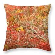 Cape Cod National Seashore Dwarf Beech Foliage Throw Pillow