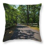 Cape Cod Rail Trail Trees Eastham Ma Fence Throw Pillow