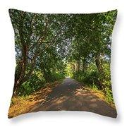Cape Cod Rail Trail Trees Eastham Ma Throw Pillow
