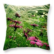 Cape Daisies And Angel Hair Throw Pillow