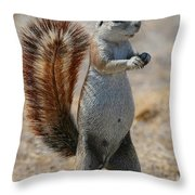 Cape Ground-squirrel  Throw Pillow