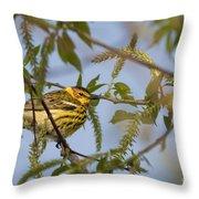 Cape May Warbler Throw Pillow