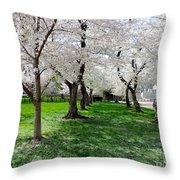 Capitol Gardens Cherry Trees Throw Pillow