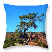 Capitol Reef 6 Throw Pillow
