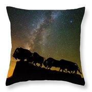 Caprock Canyon Bison Stars Throw Pillow