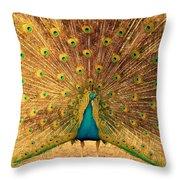 Captain Peacock Throw Pillow