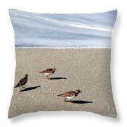 Captiva Brids Throw Pillow