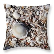 Captiva Island Iv Throw Pillow