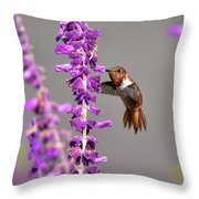 Captivated II Throw Pillow