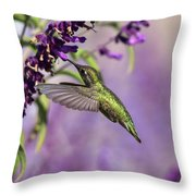 Captivated IIi Throw Pillow