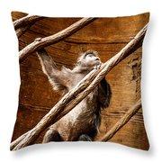 Captivity Throw Pillow