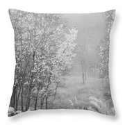 Capture Me Misty Throw Pillow