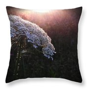 Captured By Beauty Throw Pillow