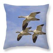 Captured Flight Of  Snow Geese Throw Pillow