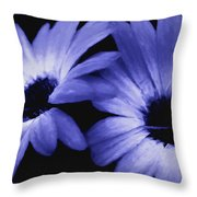 Captured In The Light Throw Pillow
