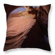 Captured Throw Pillow