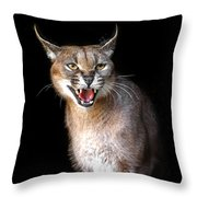 Caracal Hissy Fit Throw Pillow
