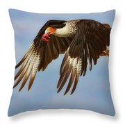 Caracara In Flight Throw Pillow
