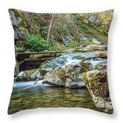 Caradocs Falls 1 Throw Pillow