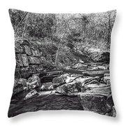 Caradocs Falls 2 Mono Throw Pillow