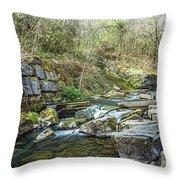 Caradocs Falls 2 Throw Pillow