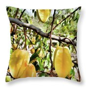 Carambola Fruit On The Tree Throw Pillow